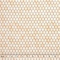 RJR 2060-001 Chicken Wire - Beige
