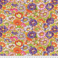 Philip Jacobs PWPJ-098 Variegated Morning Glory Orange