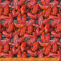 Windham Fabrics 2556-015 Lobster
