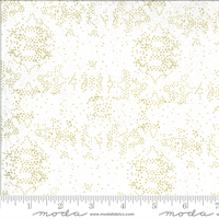 MODA 48317-19M Dwell in Possibility Ivory